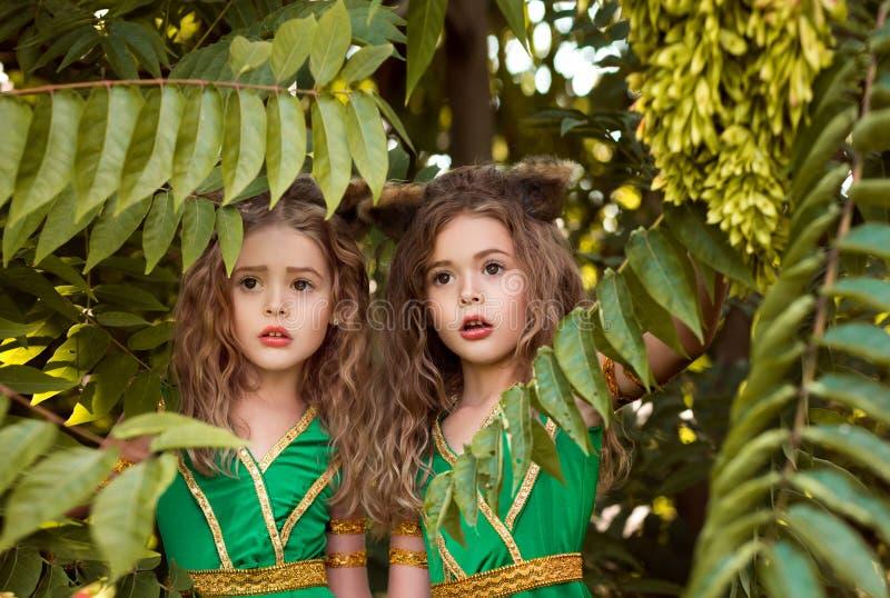 Mali lasowi mieszkanowie fotografia royalty free
