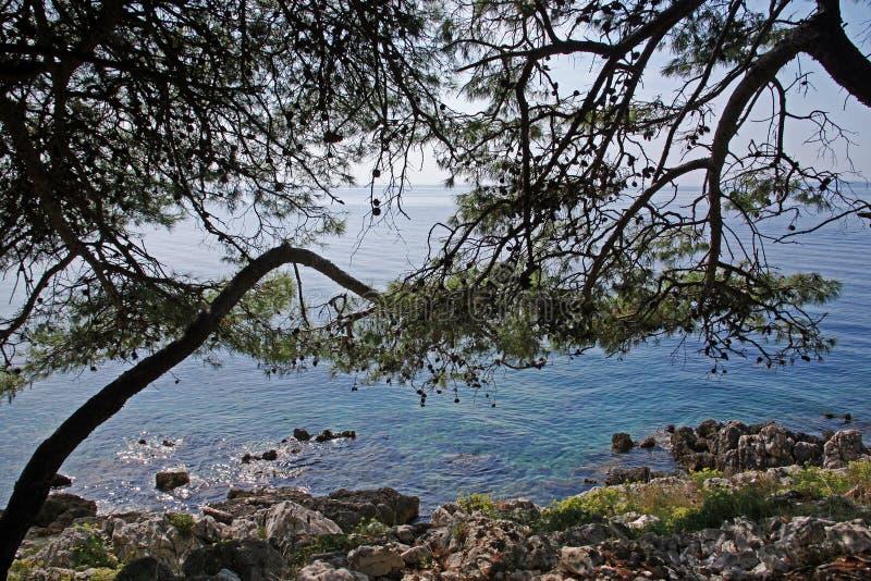 Mali Losinj,Croatia,details,end of summer,21. Mali Losinj Croatia,Adriatic coast,Europe,details,end of summer,21 royalty free stock photo