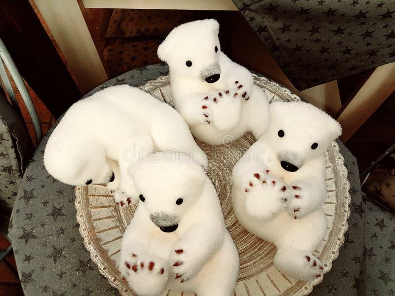 Mali niedźwiedzie polarni zdjęcie royalty free