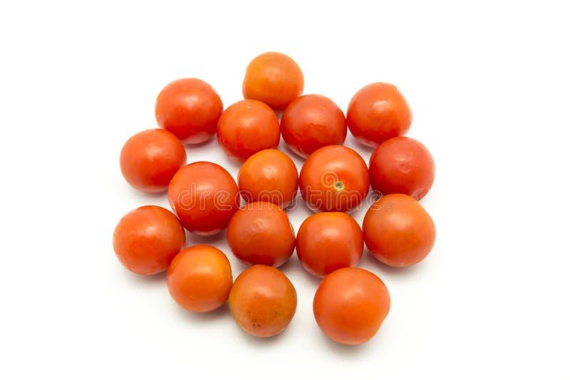 Mali pomidory zdjęcia stock