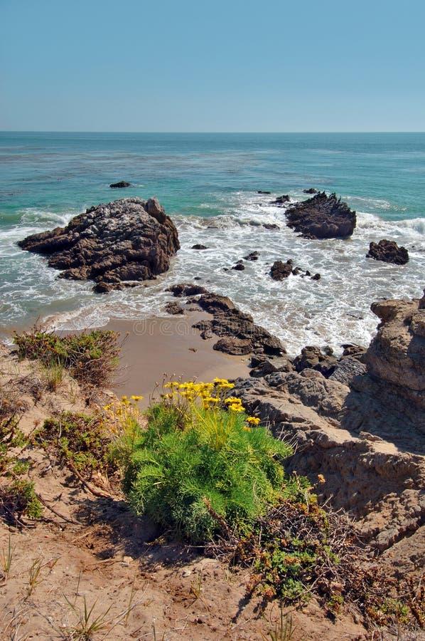 malibu california пляжа утесистое стоковое изображение rf