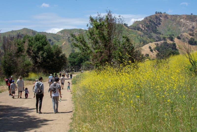 Malibu Creek State Park, CA United States -  May 5, 2019: Tourists and hikers at Malibu Creek State Park in Spring, 2019. Malibu Creek State Park, CA United royalty free stock image