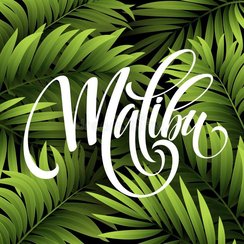 Malibu Kalifornia handwriting literowanie na palmowego liścia tropikalnym tle również zwrócić corel ilustracji wektora ilustracja wektor