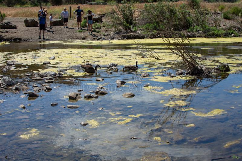 Malibu liten vikdelstatspark, CA F?renta staterna - Maj 5, 2019: Turister och fotvandrare p? den Malibu liten vikdelstatsparken i fotografering för bildbyråer