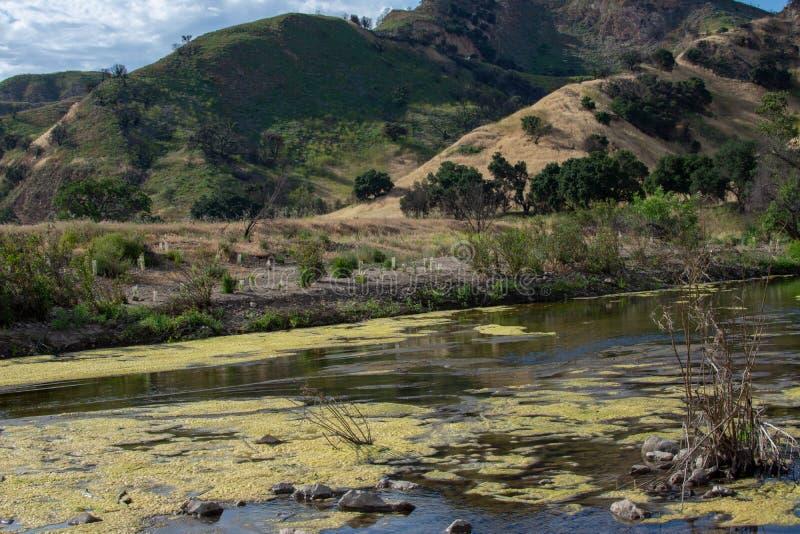 Malibu zatoczki stanu park - Maj 11, 2019: Znaki ochraniaj? odzyskuje ro?liny Malibu zatoczki stanu park w wio?nie i drzewa zdjęcie stock