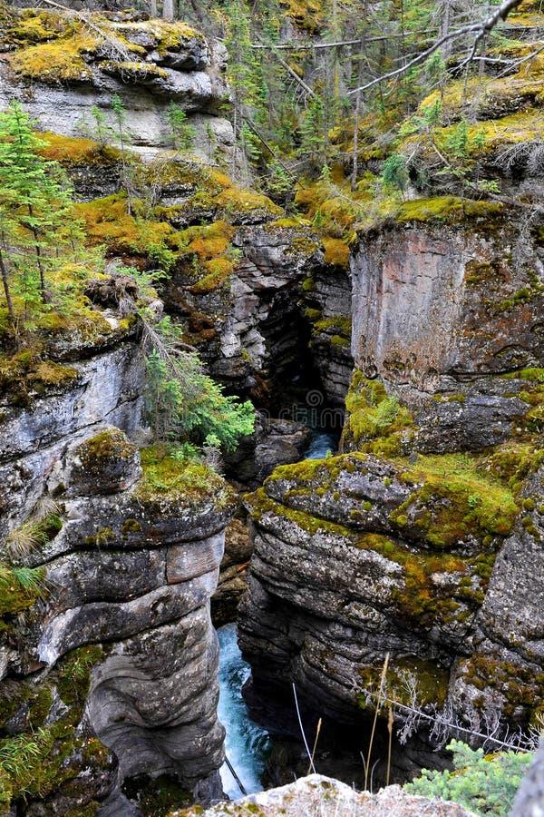 Maligne Canyon stock image