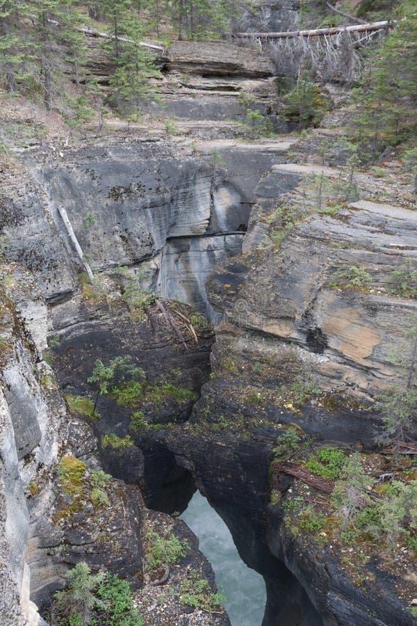 Malignecanion Jasper National Park - Voorraadbeeld stock fotografie