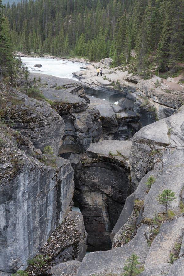 Malignecanion Jasper National Park - Voorraadbeeld stock foto's