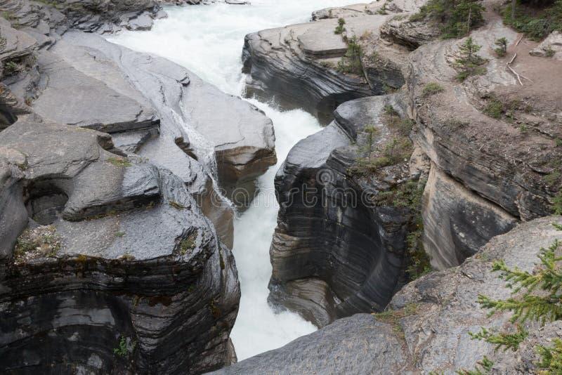 Malignecanion Jasper National Park - Voorraadbeeld royalty-vrije stock afbeeldingen