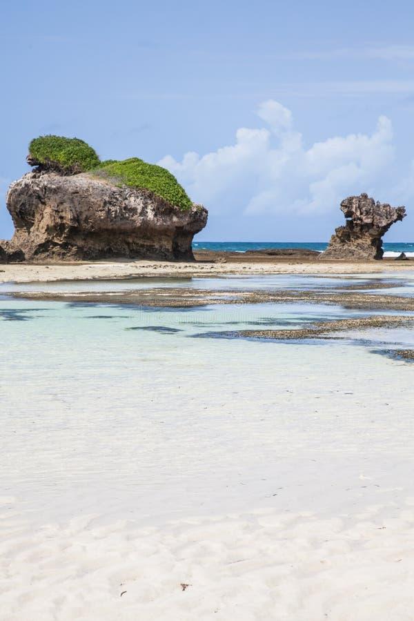 Free Malindi Beach Royalty Free Stock Photography - 27241387