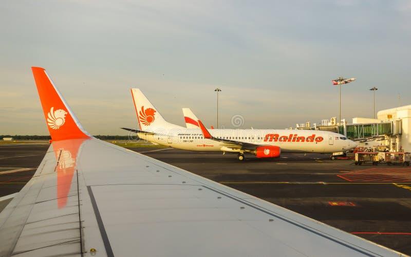 Malindo luft Boeing 737 på den Kuala Lumpur flygplatsen i Malaysia arkivfoto