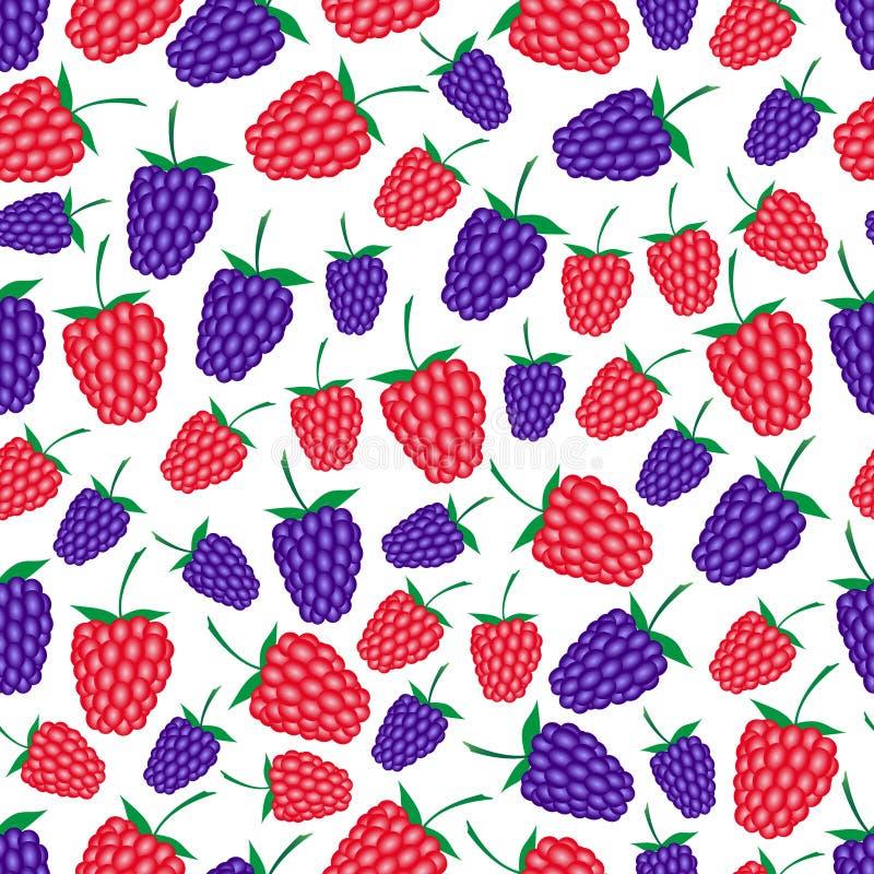 Malinek i czernic owocowego lata bezszwowy wzór eps10 ilustracji