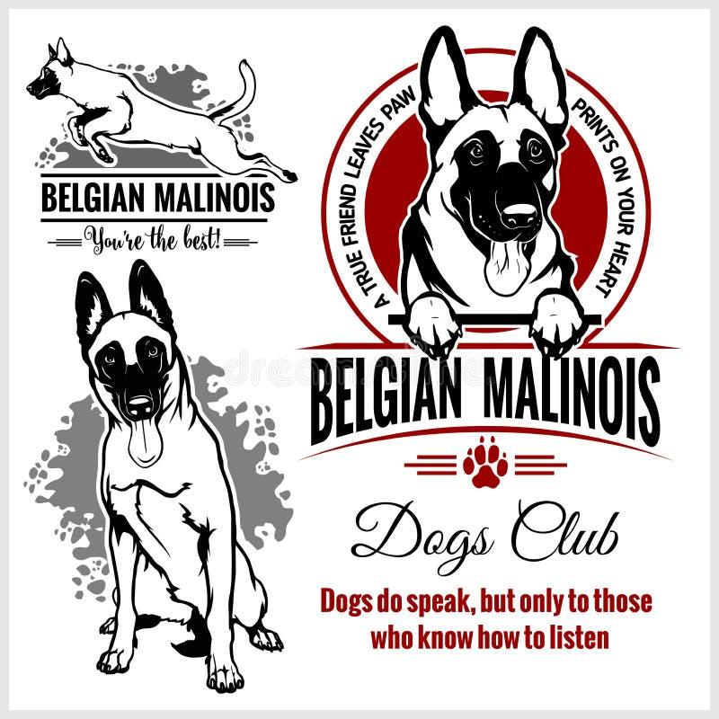 Malinois,比利时人Malinois,比利时牧羊犬- T恤杉、商标和模板徽章的传染媒介集合 库存例证