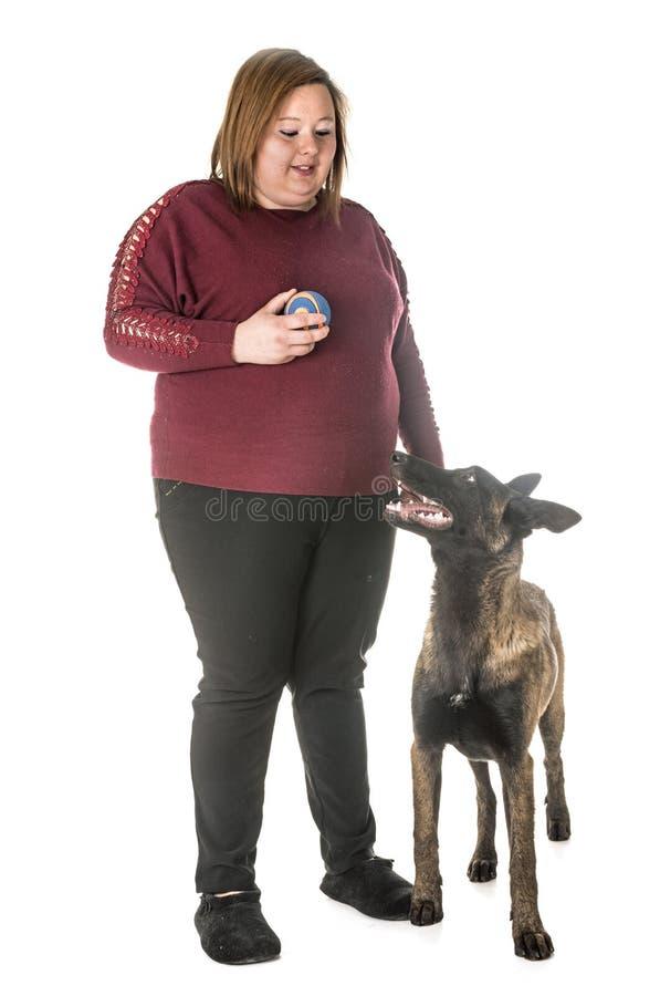 Malinois e donna belgi del pastore fotografie stock