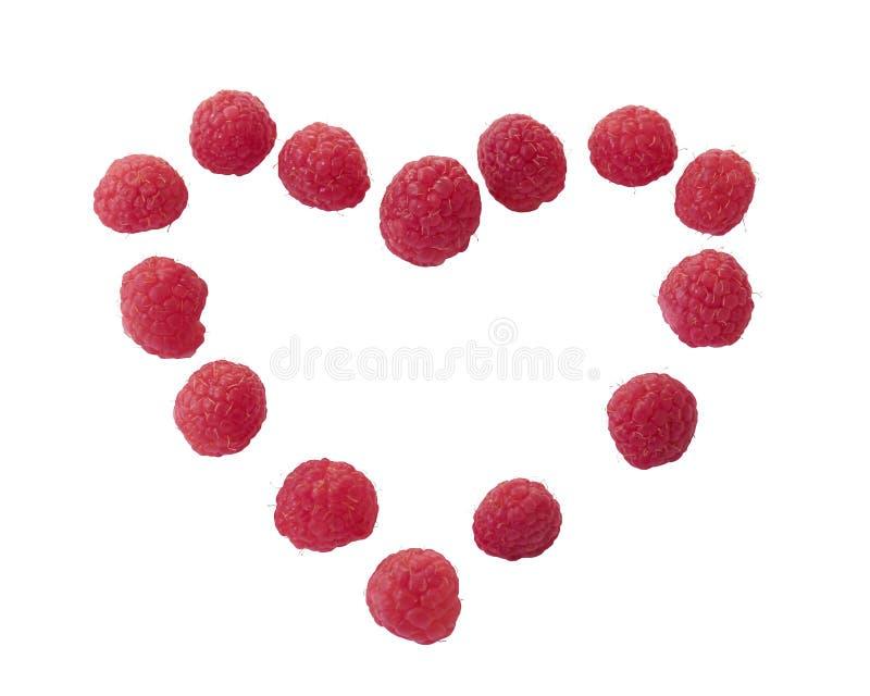 malinowe jagody i chamomile kwiat zimny traktowanie ethnoscience Malinowy serce obraz royalty free