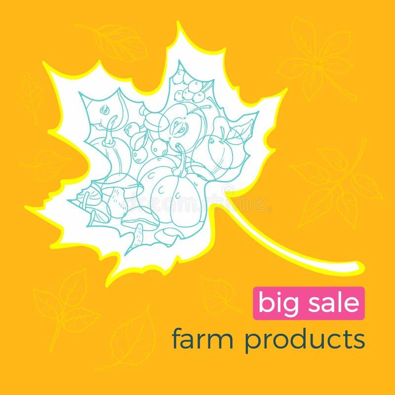Mall av olika höstgårdsprodukter med grönsaker och frukter vektor vektor illustrationer