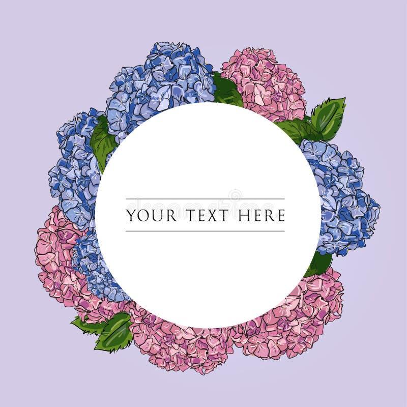 Mall för blom- design för etikett Rosa färger för översikt för illustration för vektorhand utdragna och blå vanlig hortensia på r stock illustrationer
