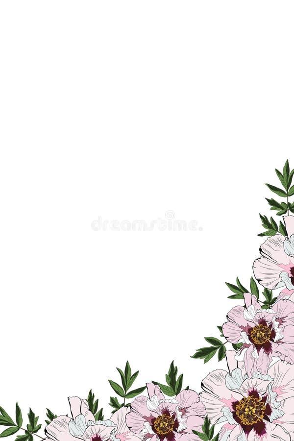 Mall för kort för rosa för pioninbjudanram för vektor sommar för vår blom- tryckbar stock illustrationer