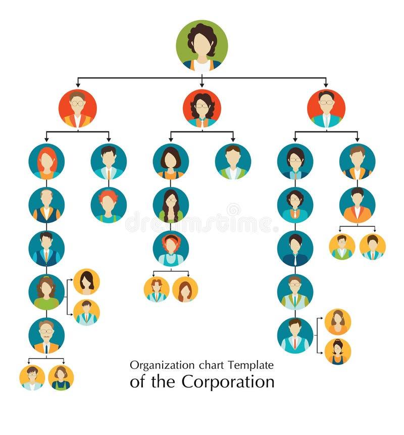 Mall för organisatoriskt diagram av korporationsaffärshierarkin vektor illustrationer