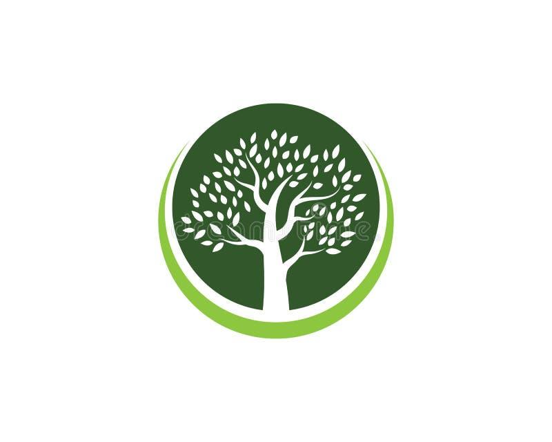 Mall för trädsymbolslogo stock illustrationer