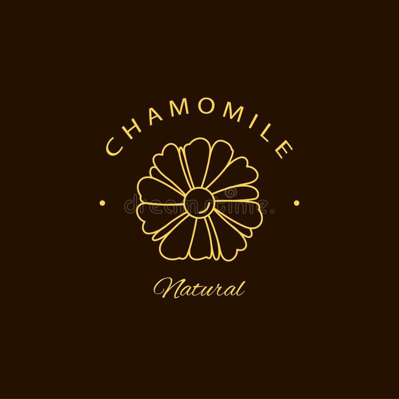 Mallar och emblem för design för vektorkamomilllogo Skönhet och skönhetsmedeloljor - kamomill Naturlig kamomill Logo i linj?r sti arkivfoto
