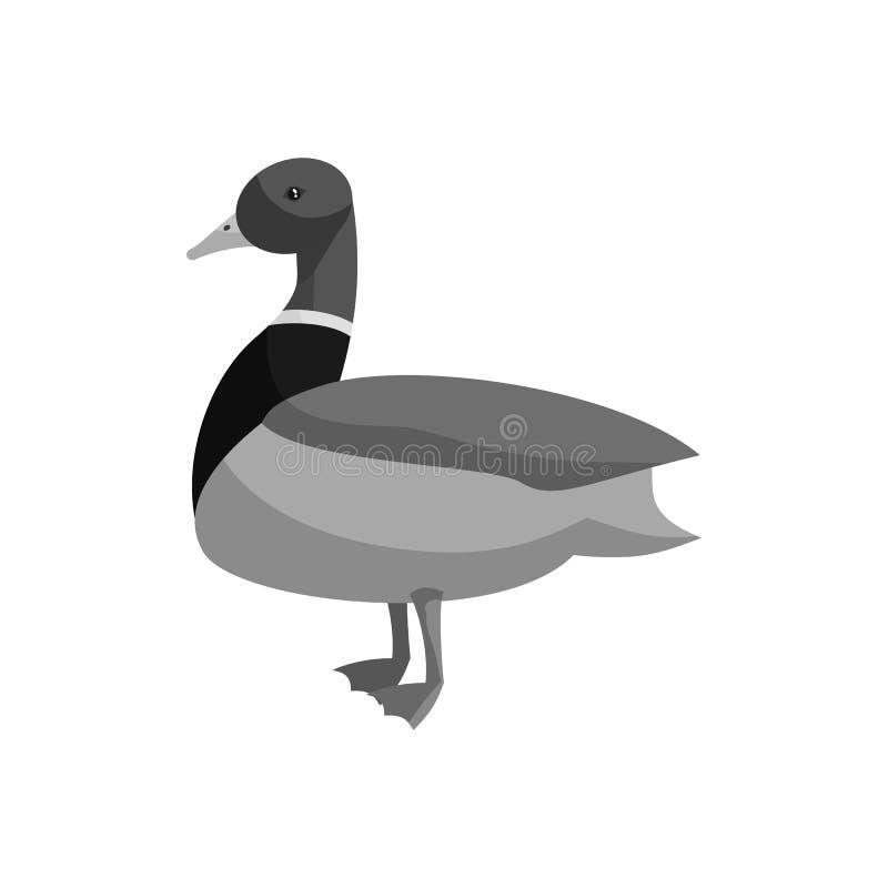 Mallard kaczki ikona, czarny monochromu styl ilustracji