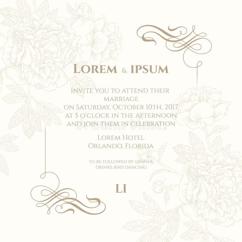 Mallkort med den calligraphic beståndsdelar och pionen Dekorativ bakgrund för kort, inbjudningar vektor illustrationer