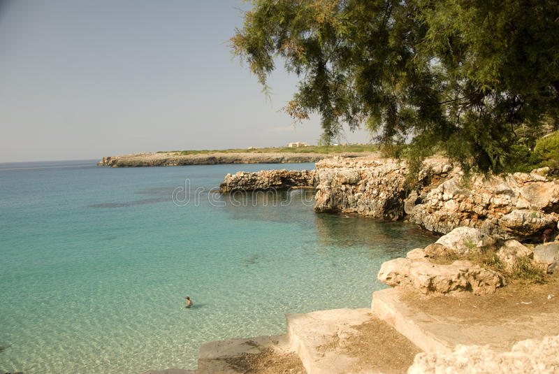 Download Mallorca stock photo. Image of majorca, people, europe - 11341298