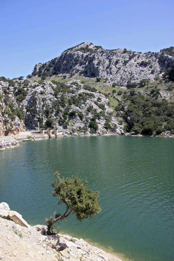 Mallorca, Balearic wyspy, Hiszpania obrazy royalty free