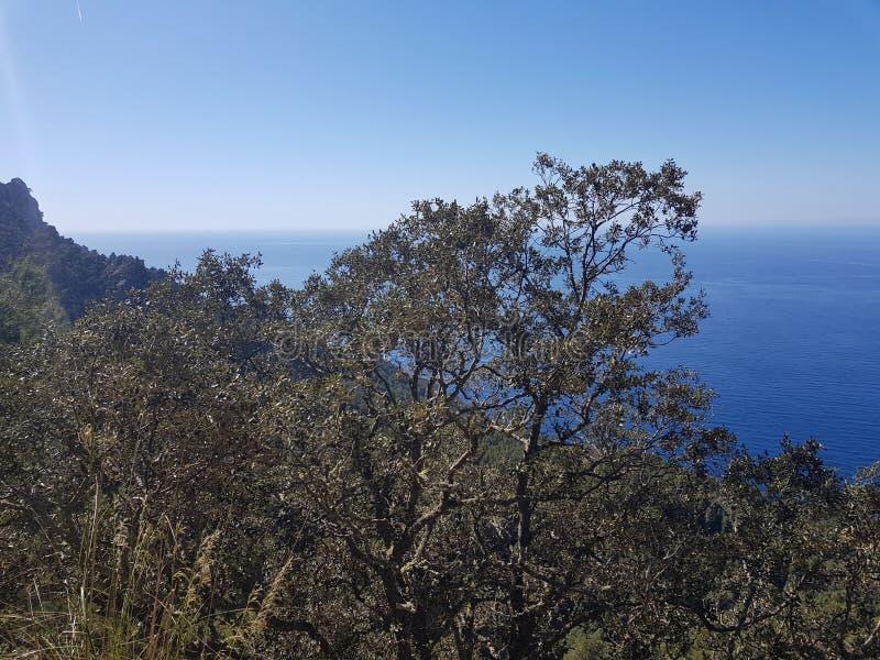 Mallorca tem vistas bonitas em cada volta e eu amo explorar e apreciar esta beleza fotos de stock royalty free