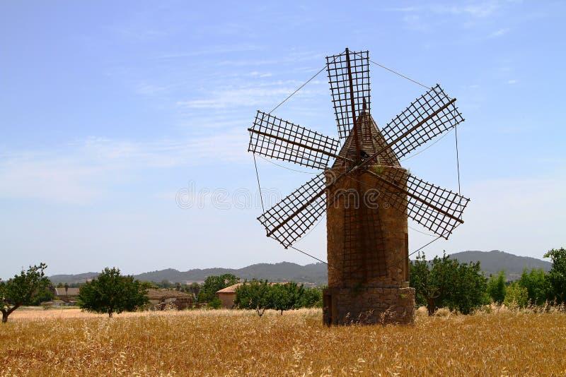 Mallorca-Windmühle stockbilder