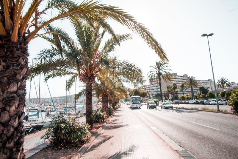 Mallorca wyspa jest wielkie Balearic wyspy zdjęcie royalty free