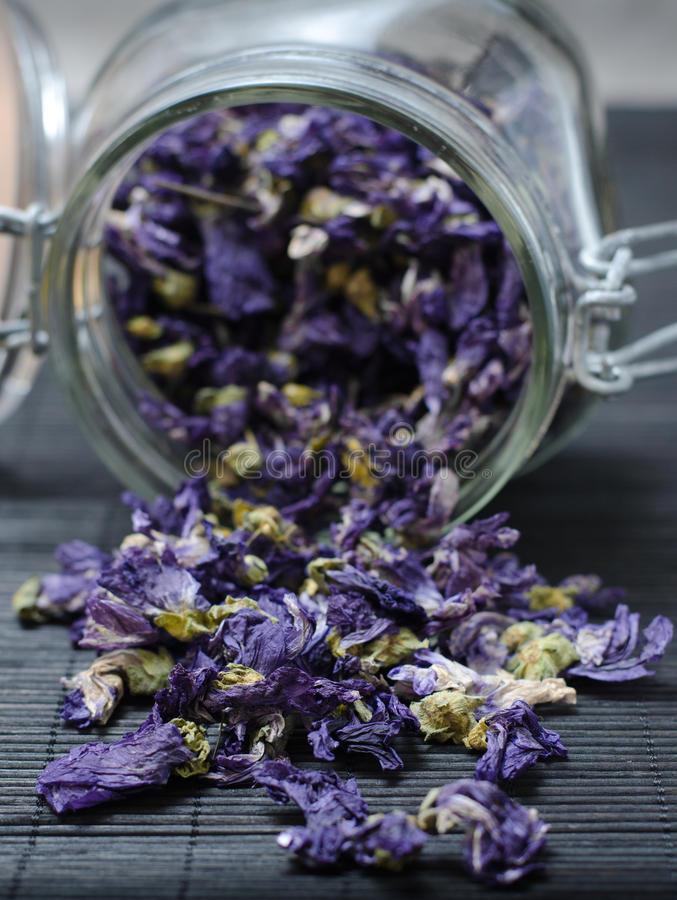 Mallow dried flowers coming out of jar stock photos