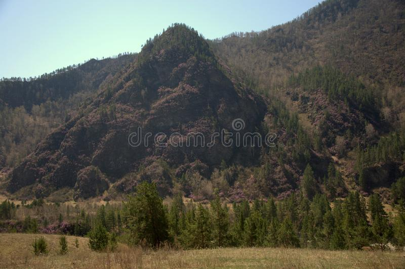 Malownicza ?yzna dolina otaczaj?ca g?rami rozci?ga poza horyzont zdjęcie stock