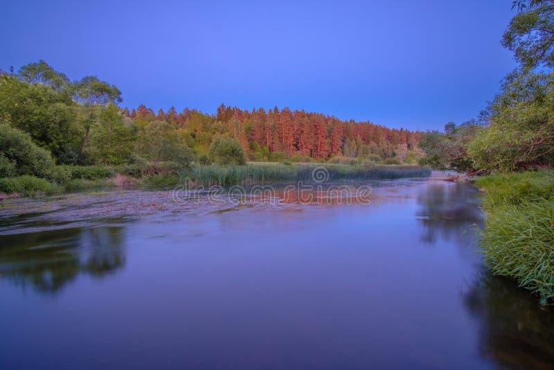 Malowniczy Środkowy rosjanina krajobraz z cienką warstwą mgły cierpnięcie wzdłuż lasu wzdłuż brzeg rzekiego zdjęcie royalty free