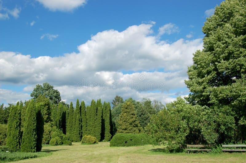 Malowniczy krajobraz fotografia royalty free