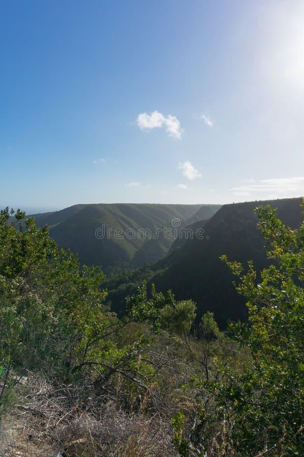 Malowniczy krajobraz las zakrywać góry obraz royalty free