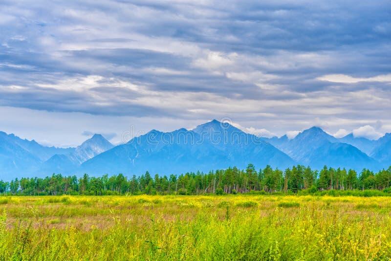 Malowniczy lato krajobraz pasmo górskie z szczytami, doliną z zieloną trawą, gajem i chmurnym niebem, Naturalny t?o z obraz stock