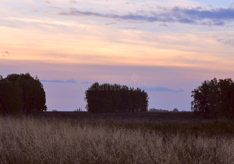 Malowniczy niebo nad drzewami i polami zdjęcia stock