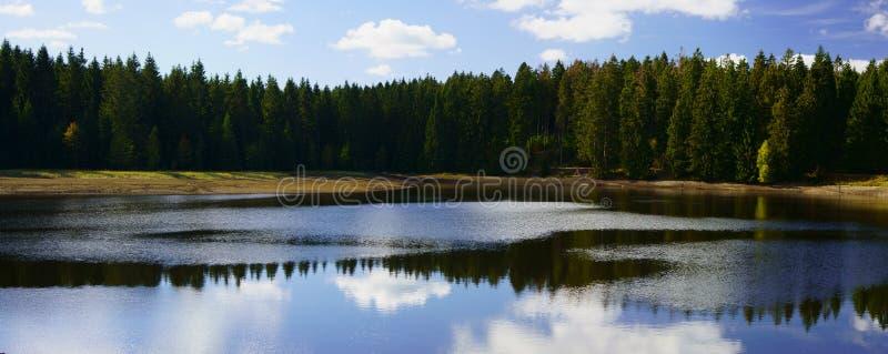 Malowniczy odbicia lasowi drzewa w jeziorze Górniczy staw blisko Clausthal-Zellerfeld w Niskim Saxony, Harz góry, Niemcy obraz royalty free