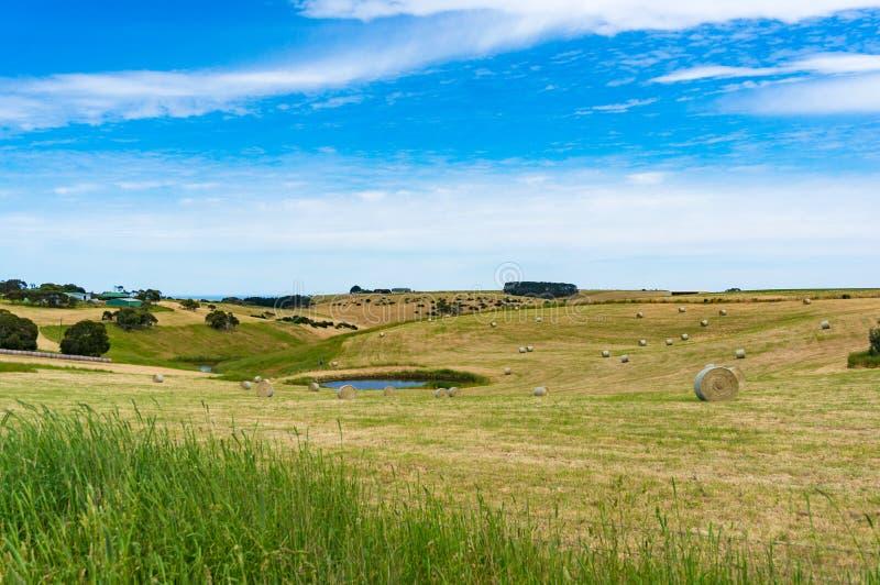 Malowniczy wiejski krajobraz pole z s?oma stawem i belami zdjęcie stock