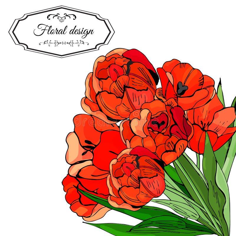 Malplaatje voor uitnodiging of groetkaart van tot bloei komende rode tulpenbloemen Hand getrokken inkt en gekleurde schets op wit royalty-vrije illustratie