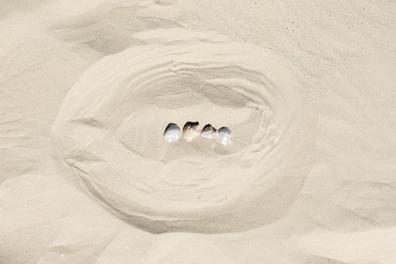 Malplaatjeachtergrond van de zomer mariene punten op een zand royalty-vrije stock fotografie