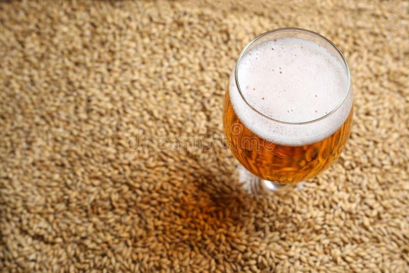 Malt et bière images stock