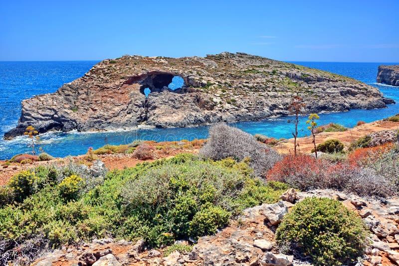 Malta Comino kust arkivfoton