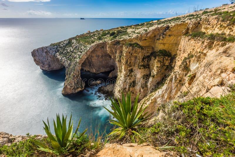 Malta - o penhasco bonito da gruta azul com plantas imagens de stock royalty free