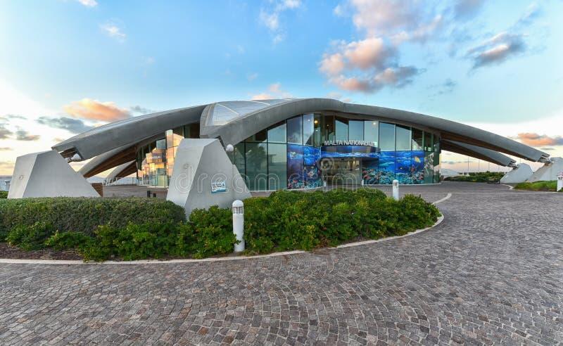 Malta-Staatsangehörig-Aquarium lizenzfreies stockbild