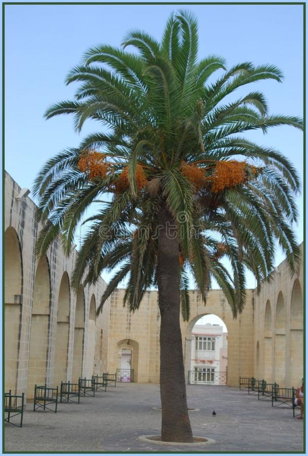 Malta23 Free Public Domain Cc0 Image