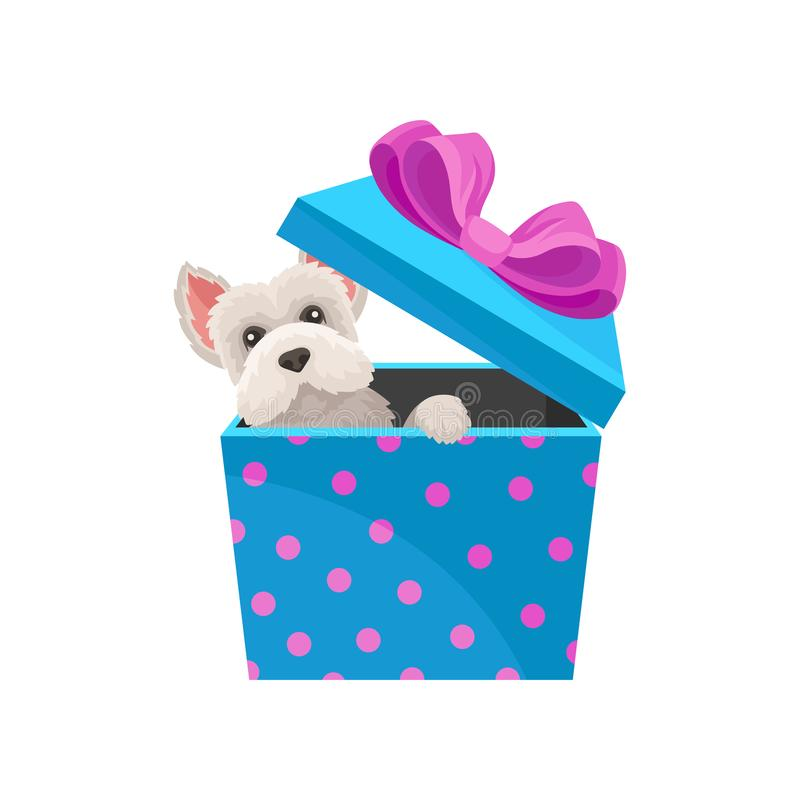 Maltese dog peeking out of blue gift box with pink bow. Adorable puppy. Flat vector element for Christmas postcard stock illustration