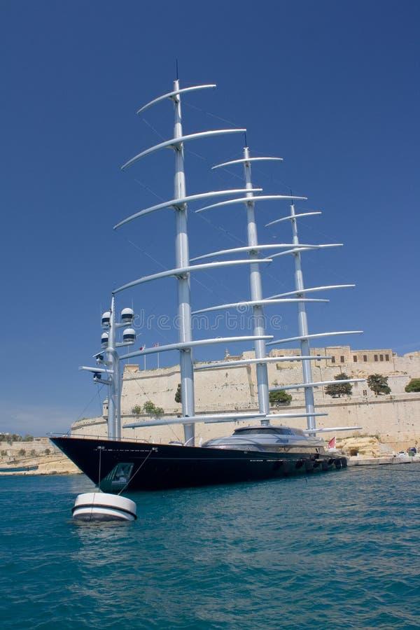 Maltesisk falk royaltyfria foton
